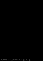 Orussus, head
