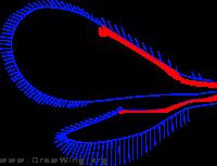 Aphelinidae, wings